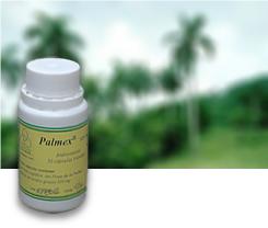 Imagen Palmex Pagina Medicamentos